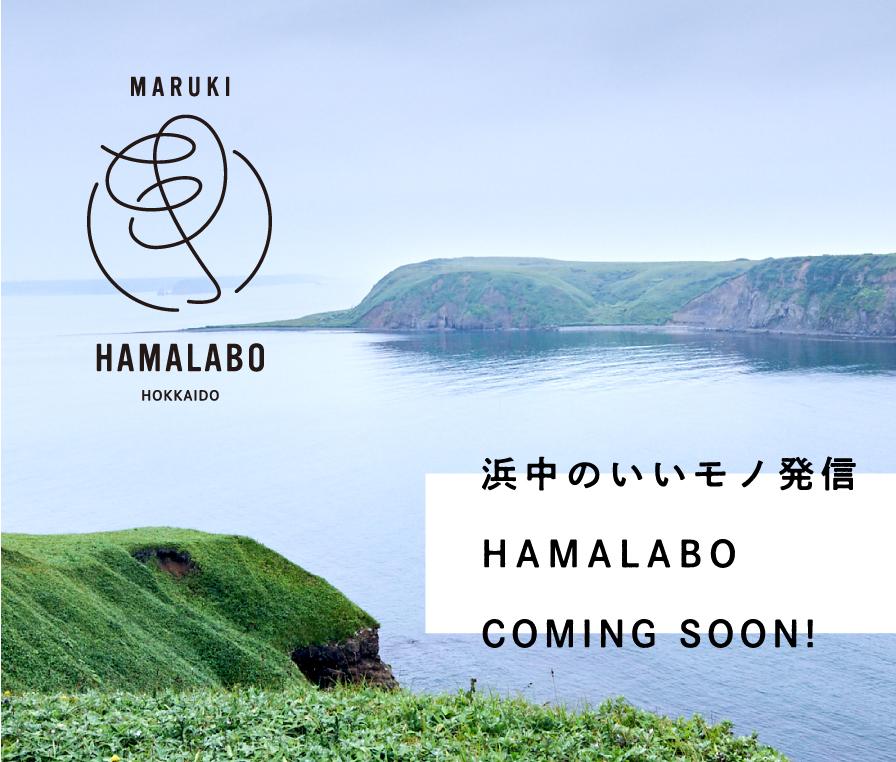 浜中のいいモノ発信 HAMA LABO COMING SOON!